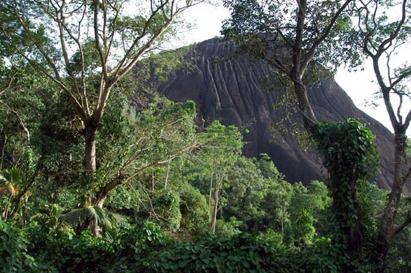 Seychelles tourisme et les parcs nationaux formalisent le partenariat pour le tourisme - Office de tourisme des seychelles ...