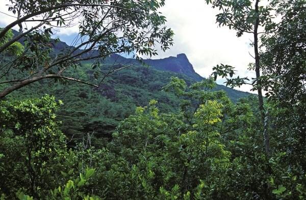 L'industrie du tourisme fait tout pour conserver l'environnement des Seychelles